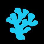 cetosea-icons_coral