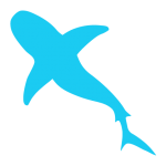 cetosea-icons_shark