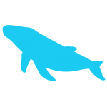 cetosea-icons_whale